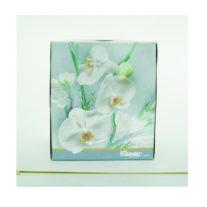 Kleenex-Boutique.Jan