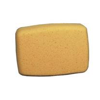 Sponge.Che.jpg