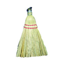 whisk-broom.det (1)